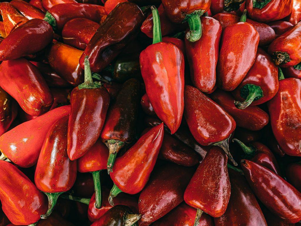 Chilischoten für die Schärfe im Chili con Carne